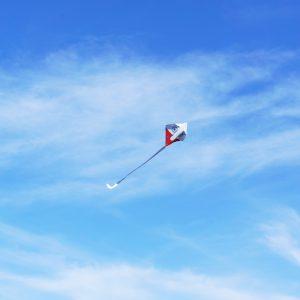 スペシャル企画「凧作りと凧上げの日」 画像